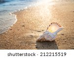 Big Seashell On The Sand On Th...