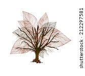 abstract tree with leaves....   Shutterstock . vector #212297581