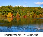 Stock photo tree reflections in the lake early autumn time in michigan 212386705