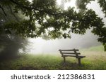 Lonely Bench In The Fog