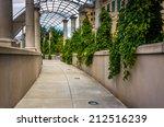 foliage hanging along a walkway ... | Shutterstock . vector #212516239