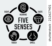 five senses vector icons set | Shutterstock .eps vector #212627401