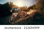 downhill mountain bike. young... | Shutterstock . vector #212654599