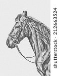 drawing of a horse black and...   Shutterstock . vector #212663524