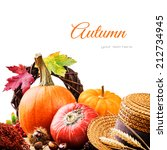 autumn setting with harvested... | Shutterstock . vector #212734945