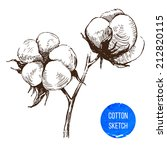 hand drawn cotton brunch in... | Shutterstock .eps vector #212820115