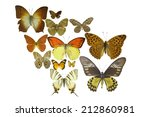 many different butterflies... | Shutterstock . vector #212860981