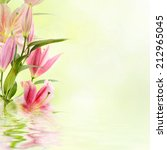 pink lilies with copy space ... | Shutterstock . vector #212965045