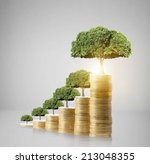 Concept Of Money Tree Growing...