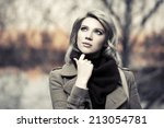 portrait of young fashion woman ... | Shutterstock . vector #213054781