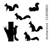Set Of Silhouettes Of Squirrel...