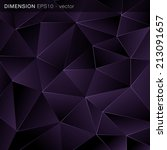 abstract triangle geometrical... | Shutterstock .eps vector #213091657
