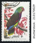 Small photo of BRAZIL - CIRCA 1980: stamp printed by Brazil, shows parrot Amazona Vinacea, circa 1980