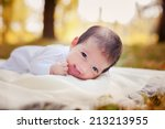 newborn baby laying on the...   Shutterstock . vector #213213955