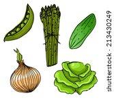 set of five cute hand drawn... | Shutterstock .eps vector #213430249