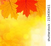 autumn background | Shutterstock .eps vector #213430411
