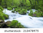 stream in green forest | Shutterstock . vector #213478975