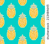 seamless pattern with cartoon... | Shutterstock . vector #213484645