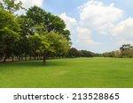 green trees in beautiful park | Shutterstock . vector #213528865