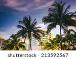 palm trees and buildings in... | Shutterstock . vector #213592567