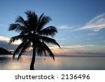 peaceful sunset taken on the... | Shutterstock . vector #2136496