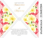 wedding invitation cards with...   Shutterstock .eps vector #213683584