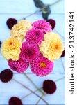 Dahlia Flowers In Vase On Tabl...