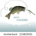 bass fishing  bass catches the... | Shutterstock .eps vector #213825031