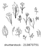 set of different flowers vector | Shutterstock .eps vector #213873751