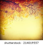Autumn Background. Fall...