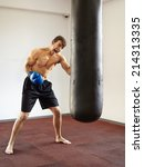 kickbox fighter training in the ... | Shutterstock . vector #214313335