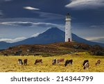 cape egmont lighthouse and... | Shutterstock . vector #214344799