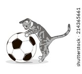 gray cat with a ball | Shutterstock .eps vector #214365661