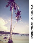 palm trees on the beach  phi... | Shutterstock . vector #214380565