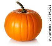 Pumpkin On White Background....