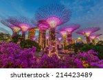 Singapore Aug 31  Night View O...