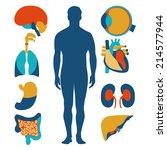 flat design icons for medical...   Shutterstock .eps vector #214577944