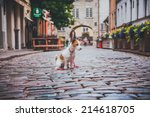 dog in the city. riga. jack... | Shutterstock . vector #214618705