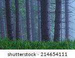 fairy tale fir tree forest | Shutterstock . vector #214654111