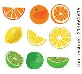 citrus fruit isolated vector set | Shutterstock .eps vector #214665619