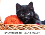 Stock photo black kitten playing with a red ball of yarn isolated on a white background 214670194