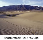 single track of footsteps in  ... | Shutterstock . vector #214759285