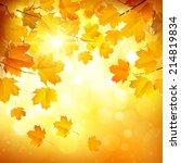 autumn leaves | Shutterstock .eps vector #214819834