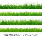 green grass    Shutterstock . vector #214867861