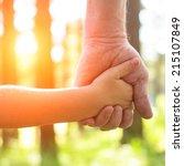 close up hands  an adult... | Shutterstock . vector #215107849
