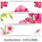 watercolor colorful flower and... | Shutterstock . vector #215113081