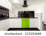 interior of black and white... | Shutterstock . vector #215203684