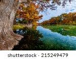 beautiful fall foliage of giant ... | Shutterstock . vector #215249479