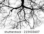 Twigs Silhouette On White...