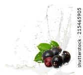 photo of elderberry with milk... | Shutterstock . vector #215465905